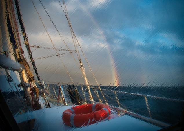 Kamil Majerczyk (Rainbow)